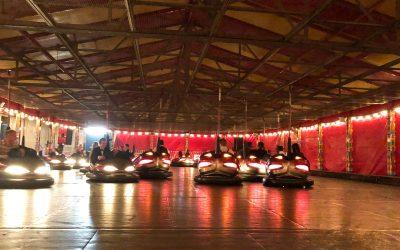Syon Park Christmas Party…
